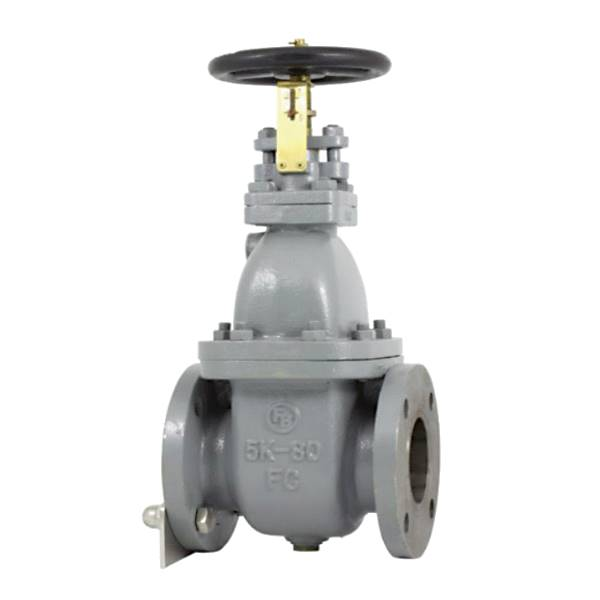 Cast Iron Marine Valves